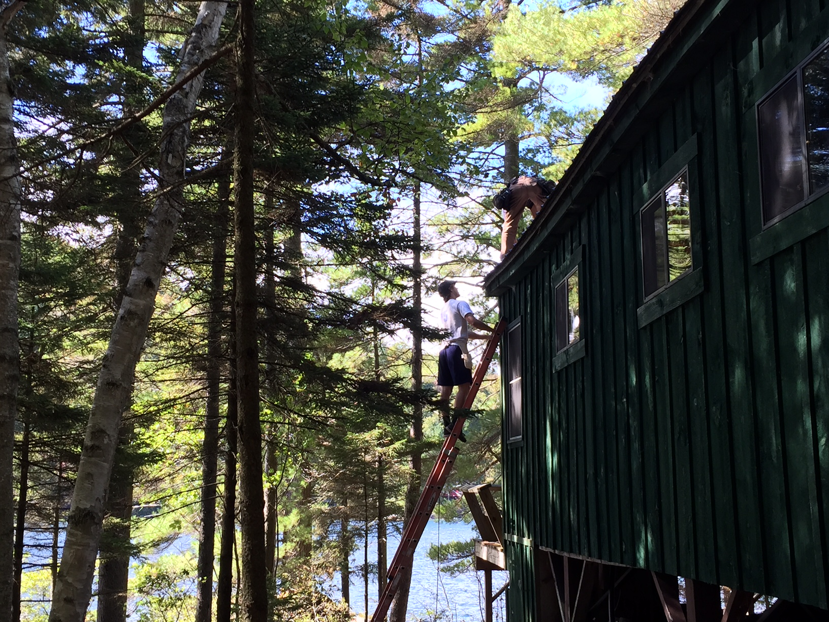 A few months in and a second summer on the job makes a boy comfortable on a ladder: a good thing, too